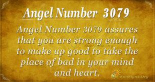 Angel Number 3079