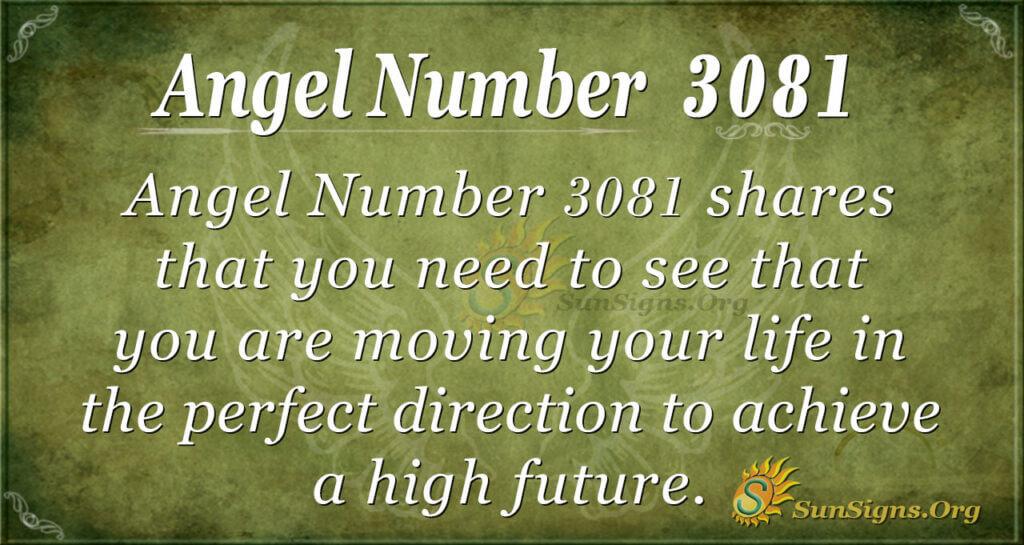 Angel nuber 3081