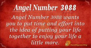 Angel Number 3088