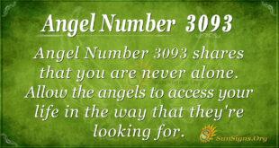 Angel Number 3093