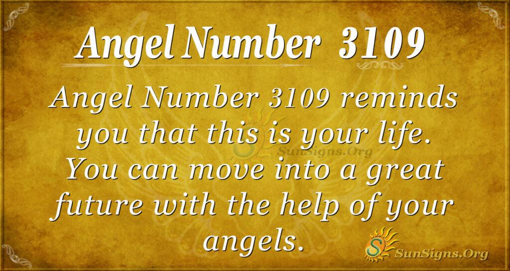 Angel Number 3019