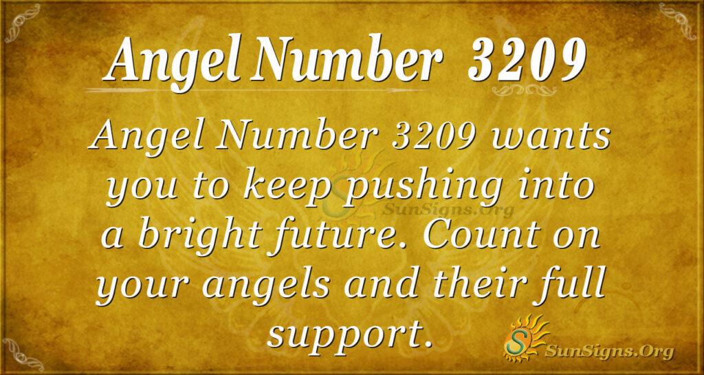 Angel Number 3209