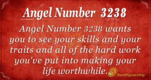 Angel Number 3238