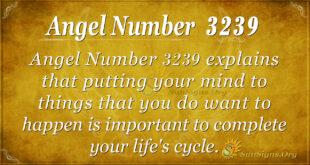 Angel Number 3239