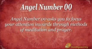 Angel Numbers Category | Sun Signs