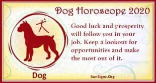 dog horoscope 2020