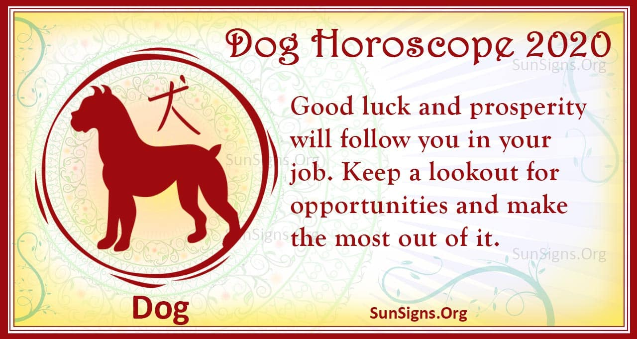 Dog Horoscope 2020 - Free Astrology Predictions! | SunSigns Org