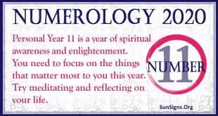 Number 11 - 2020 Numerology Horoscope