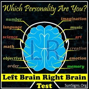 Left Brain Right Brain Quiz