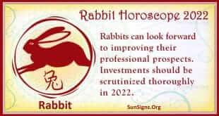 rabbit 2022