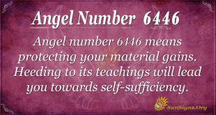 angel number 6446