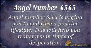 angel number 6565