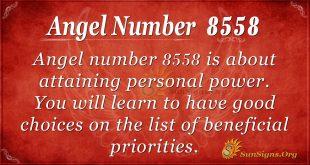 angel number 8558