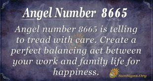 angel number 8665