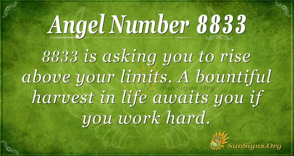 Angel Number 8833
