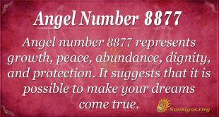 Angel Number 8877