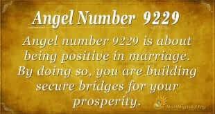 angel number 9229