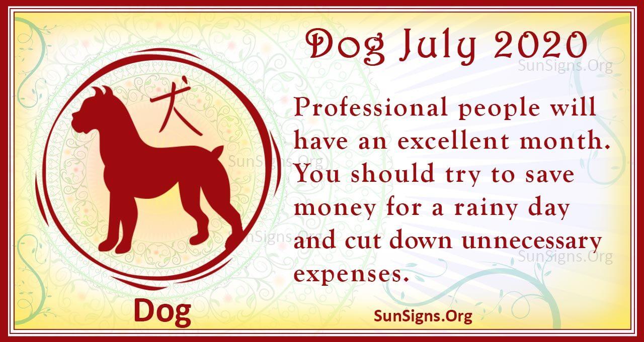 dog july 2020