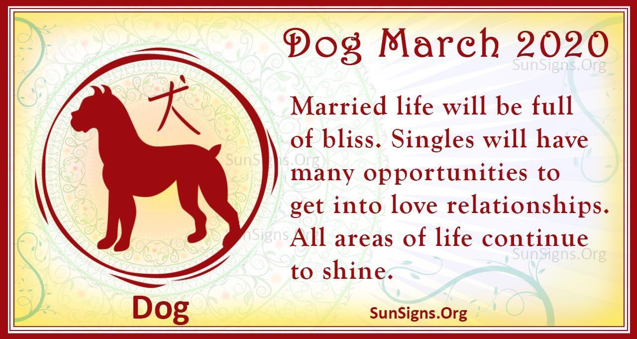 dog march 2020