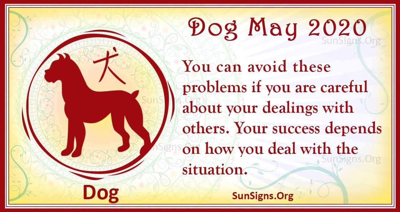dog may 2020