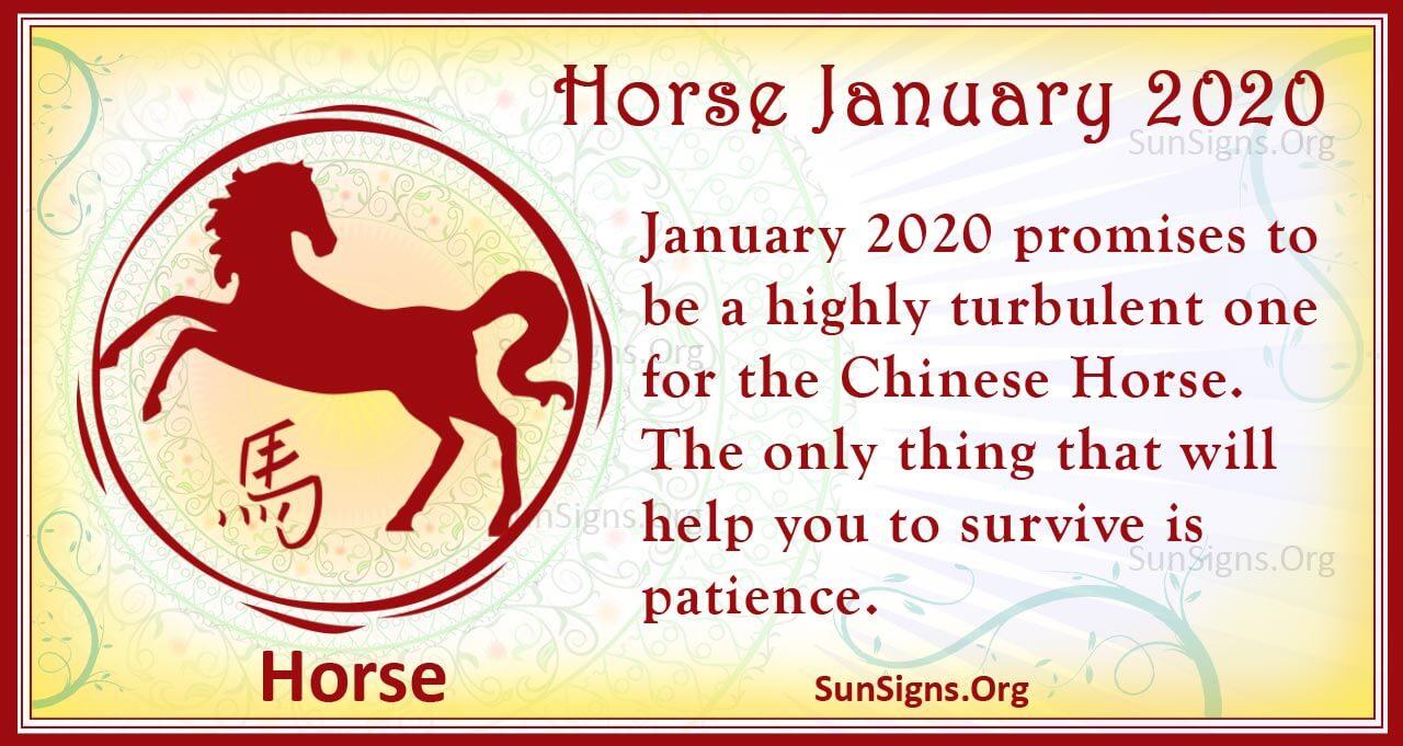 horse january 2020