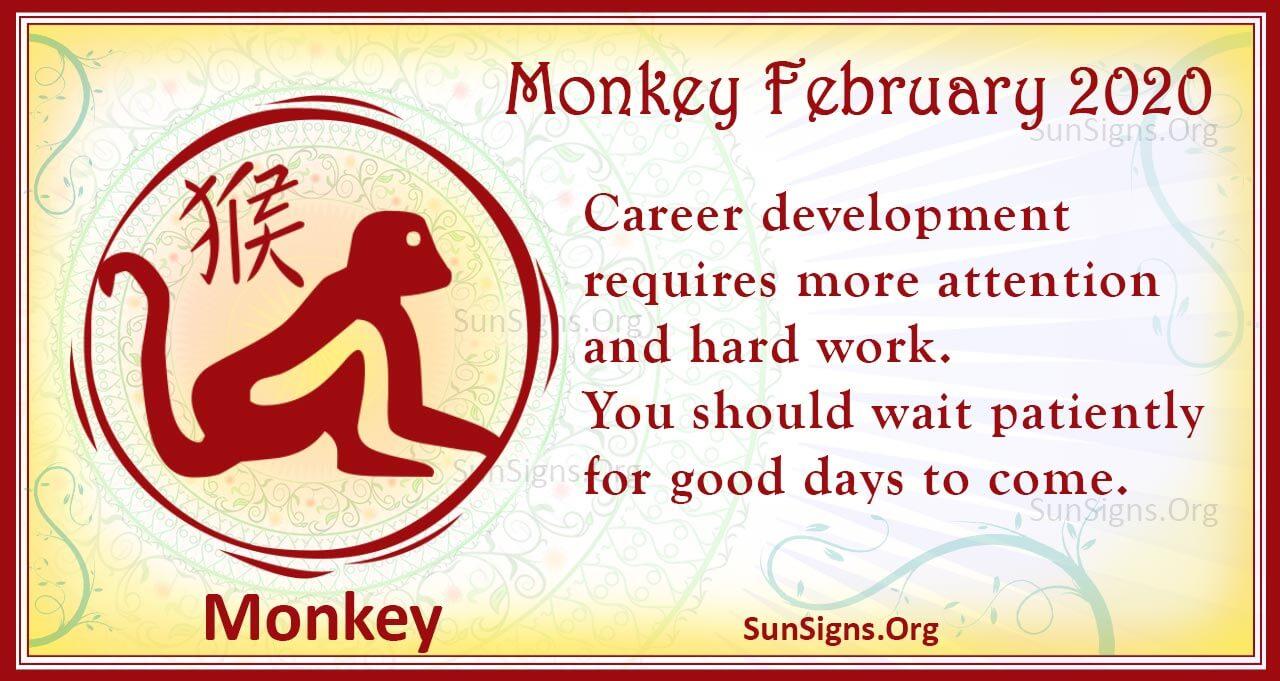monkey february 2020