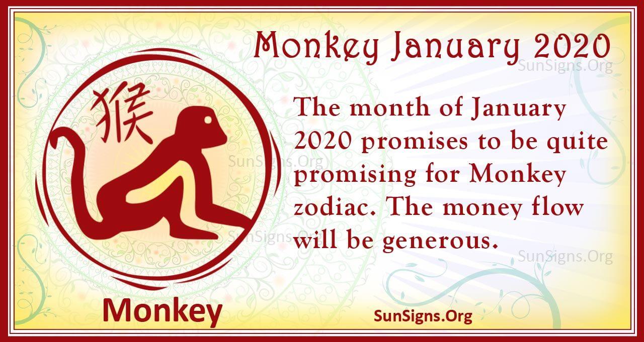 monkey january 2020