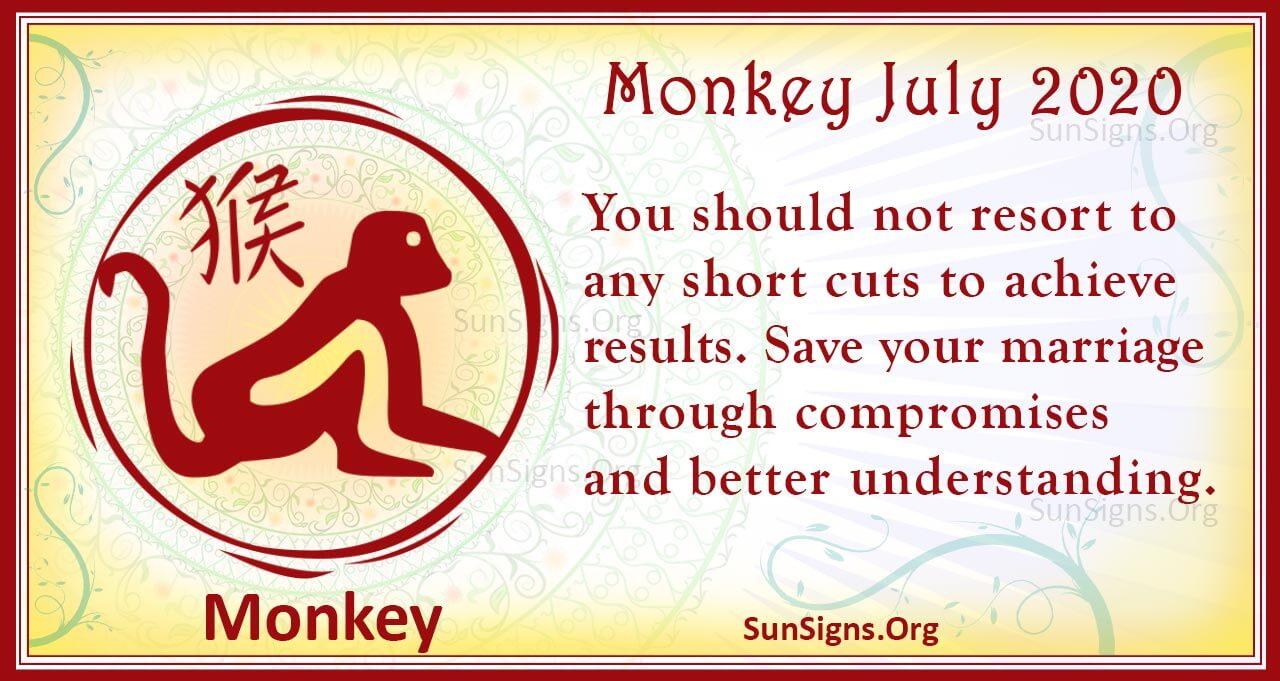 monkey july 2020