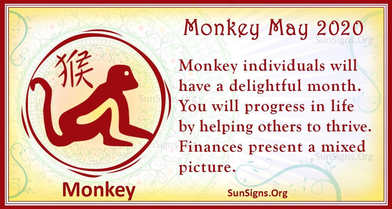 monkey may 2020