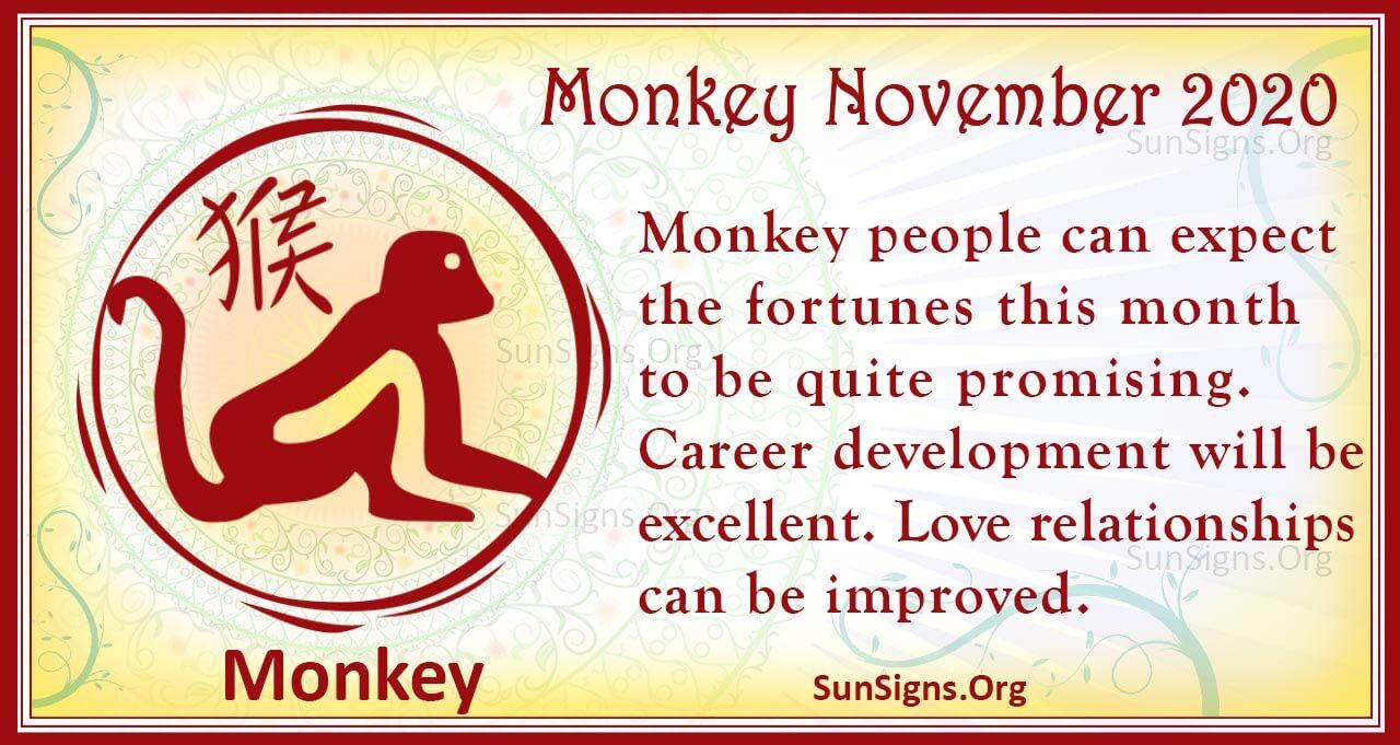 monkey november 2020