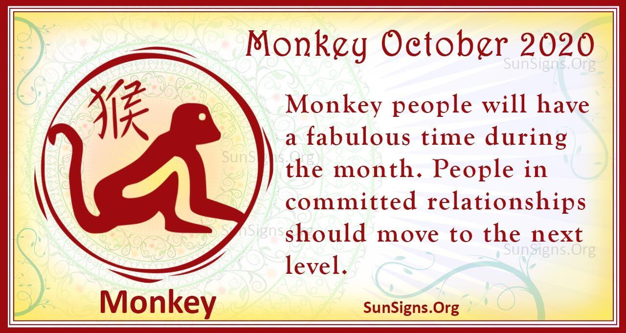 monkey october 2020
