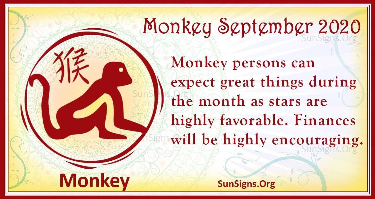 monkey september 2020