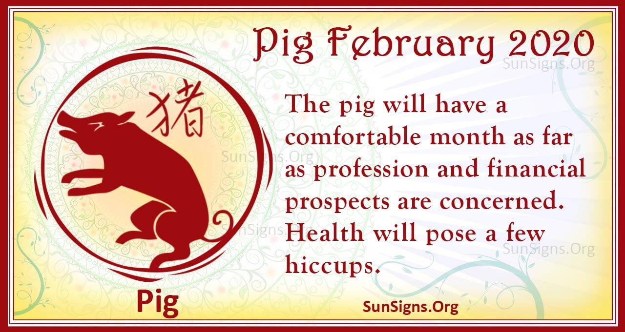 pig february 2020