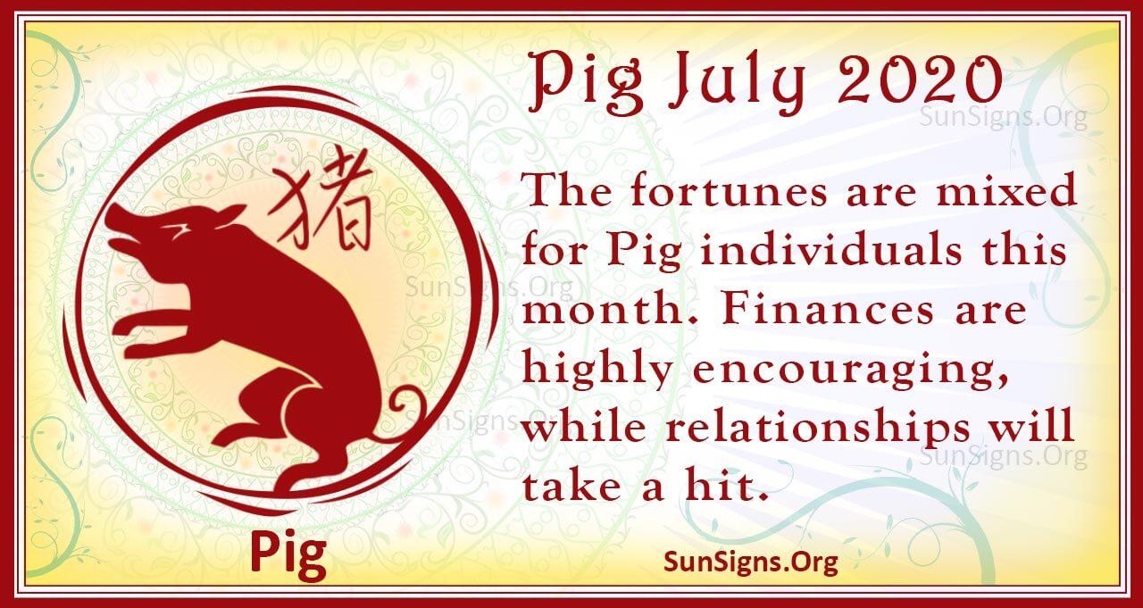 pig july 2020
