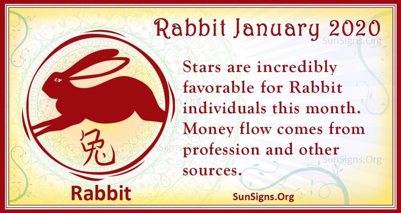 rabbit january 2020