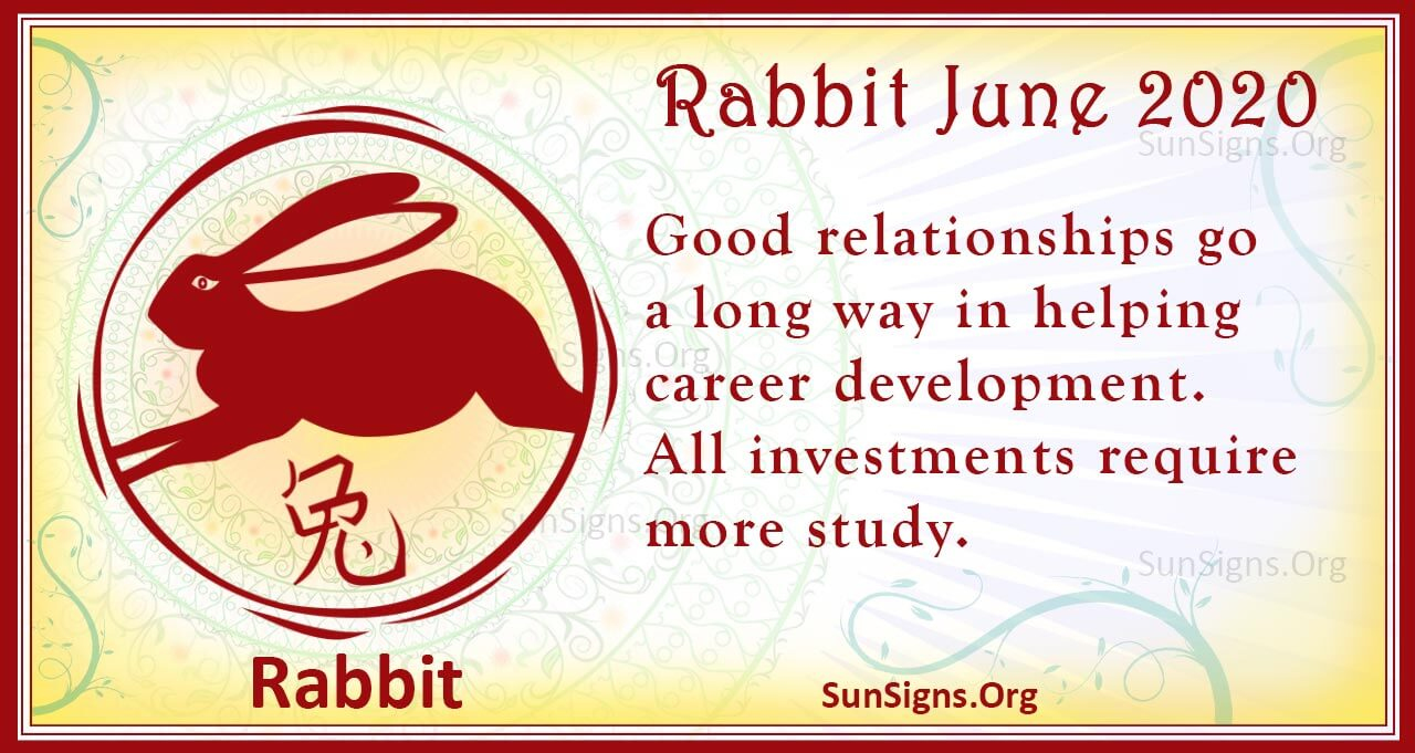rabbit june 2020