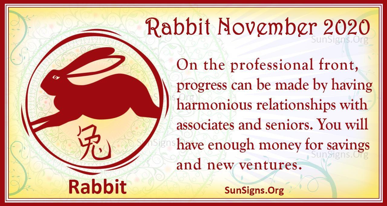 rabbit november 2020