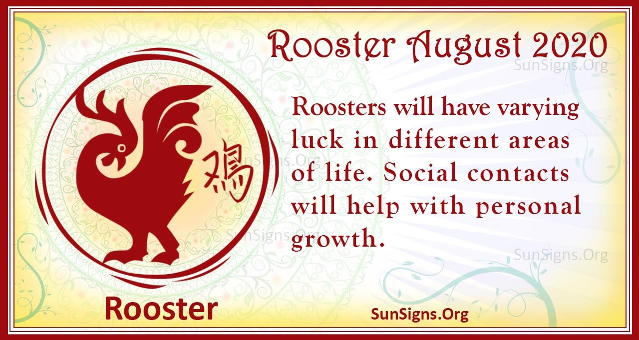 rooster august 2020