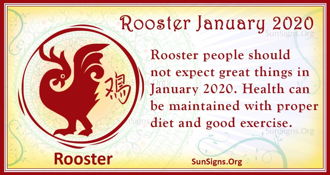 rooster january 2020