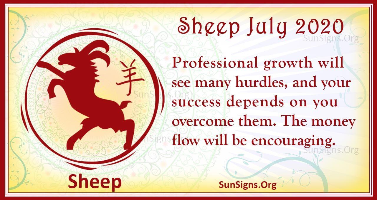 sheep july 2020
