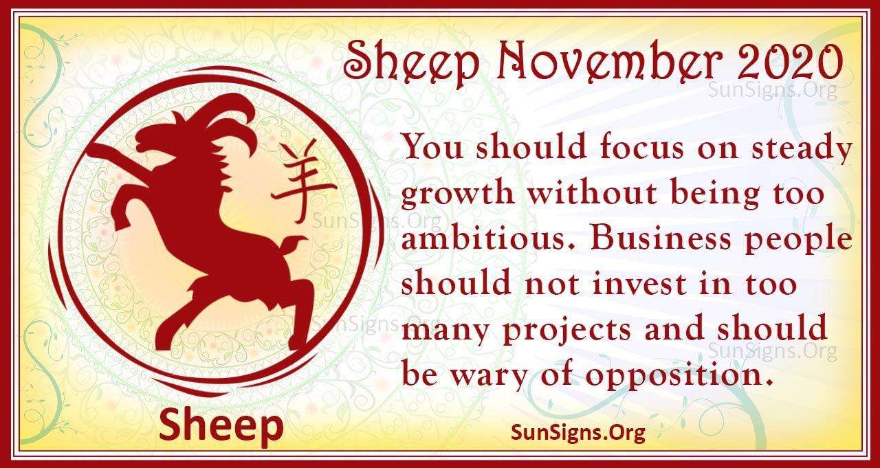 sheep november 2020