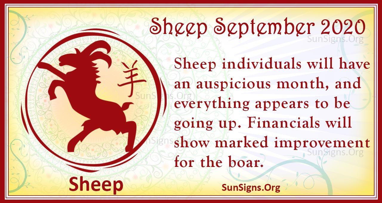 sheep september 2020