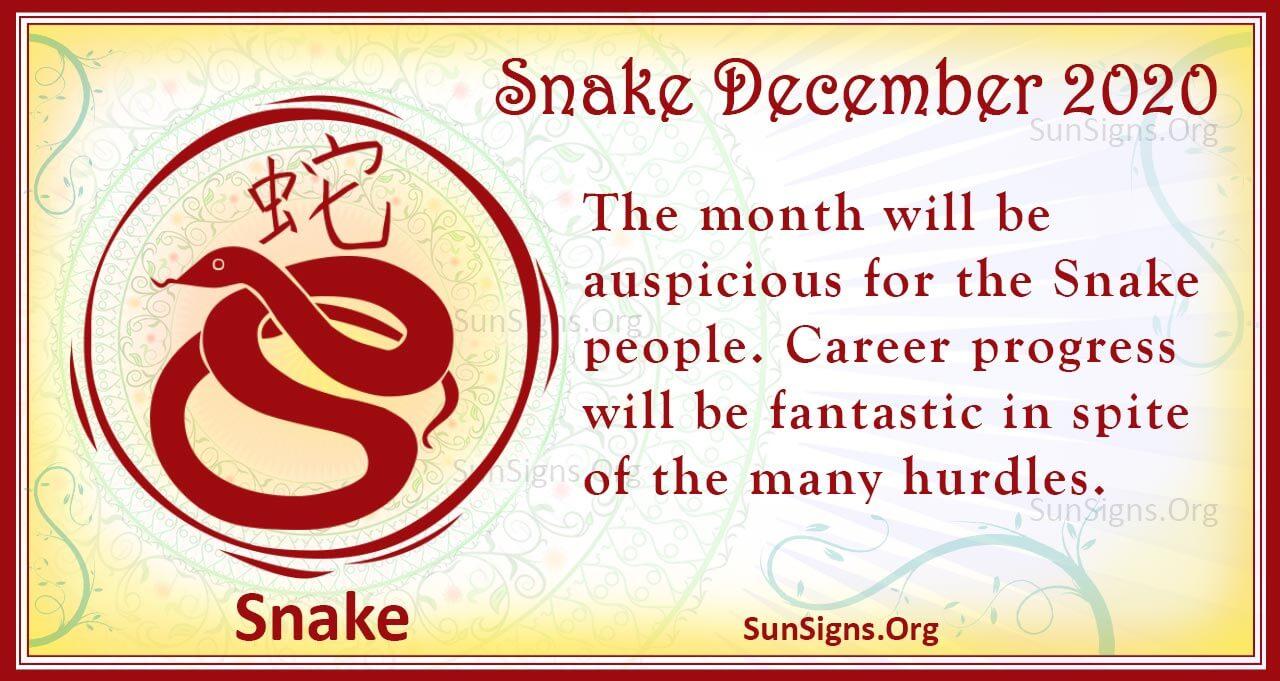 snake december 2020