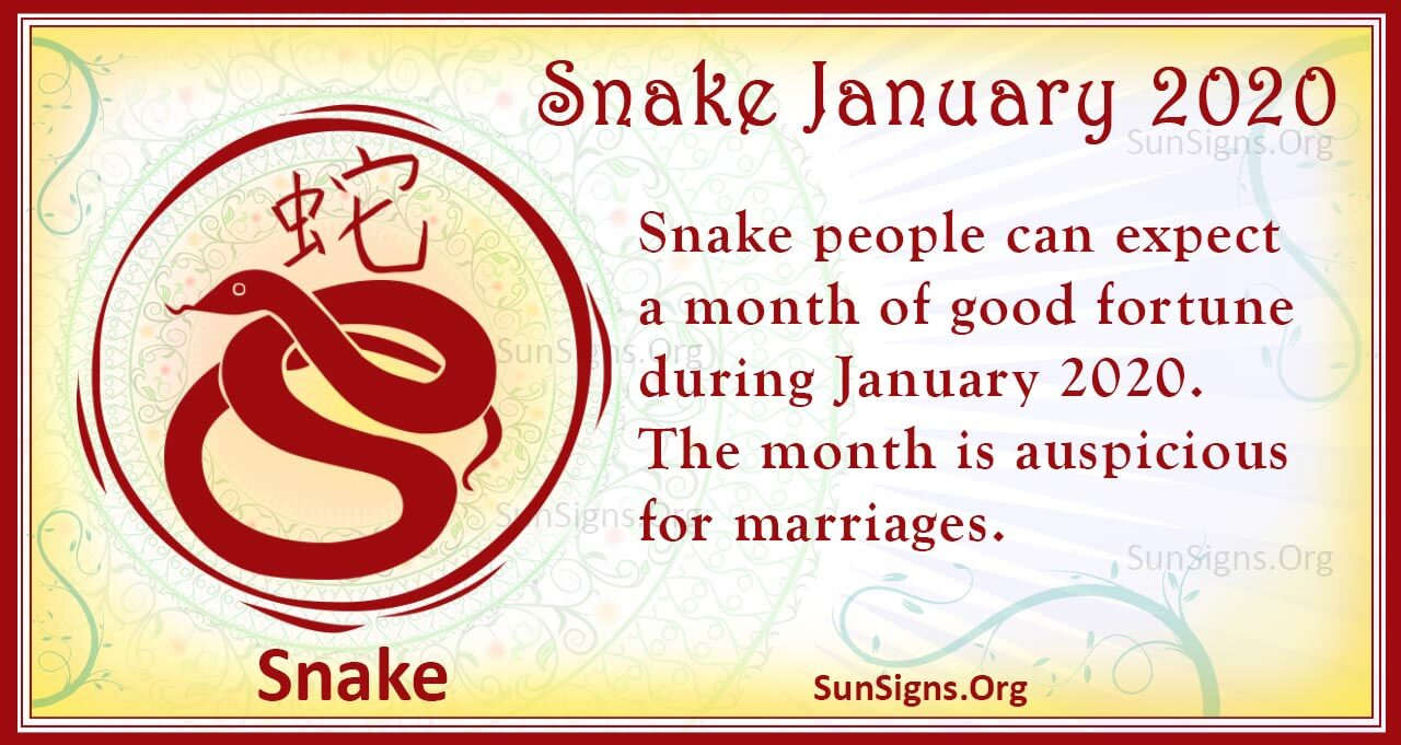 snake january 2020