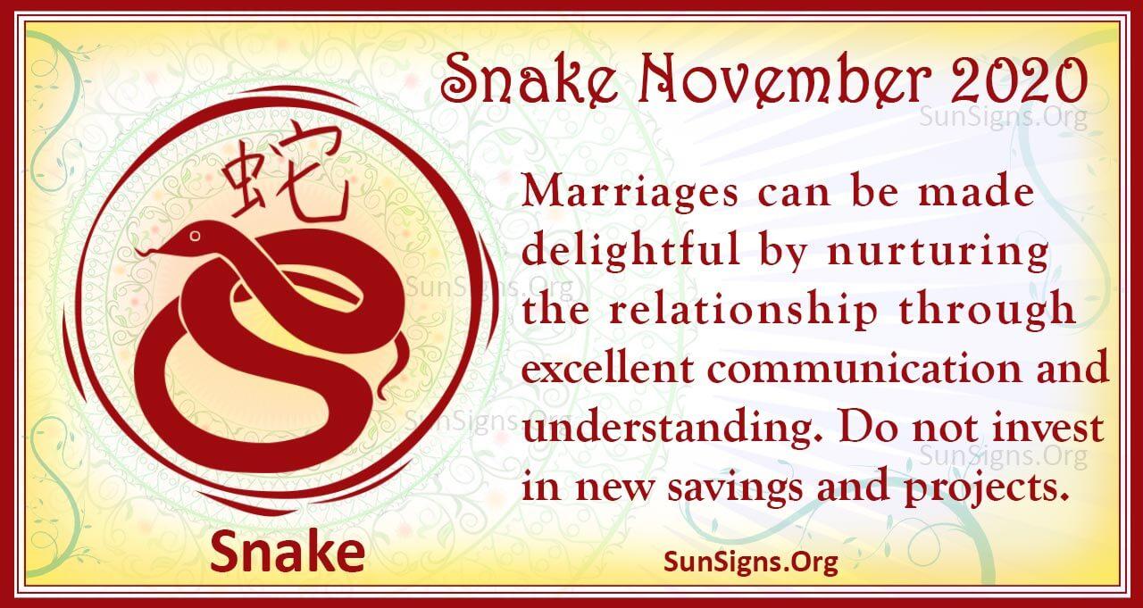 snake november 2020