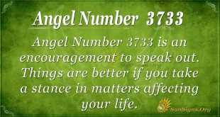Angel Number 3733