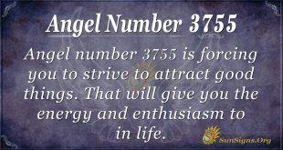 angel number 3755