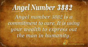 Angel Number 3882