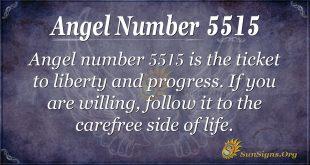 angel number 5515
