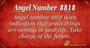 angel number 8818